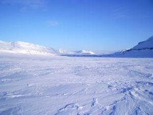 Arctic Desert